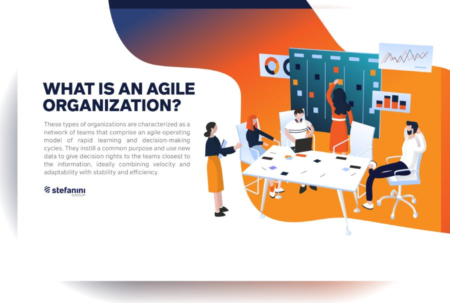 What is an Agile Organization